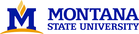 25 Most Affordable Master's in Counseling in the West - Montana State University